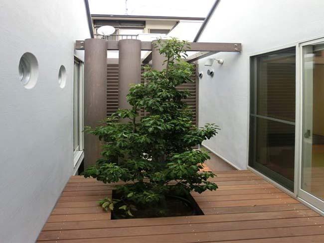 平屋の邸宅Iの部屋 シンボルツリーのあるウッドデッキ
