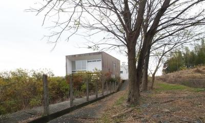 緑の高台に建つ9m大開口の家