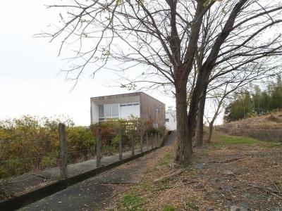 外観01 並木道のアプローチ (爽やかな風が通り抜ける家|9mの大開口の家)