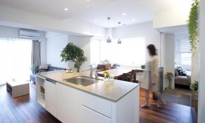 KEIDAS—光と風と緑があふれるオアシス (キッチンから見たリビング)