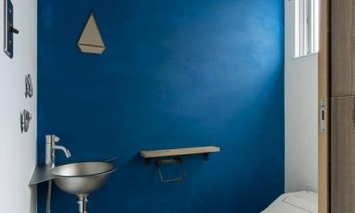芝生丘のあるプライバシーを確保しつつ開く窓の家(宇治の家) (トイレ)