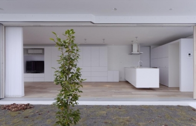 Living room (c-house_中庭と一体になるコンクリートの家)