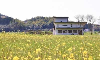 菜の花畑の中のピザ屋兼住宅