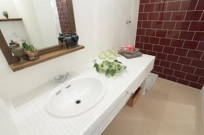 洗面室 (ナチュラルスタイル~Heritage アイアン素材の融合~)