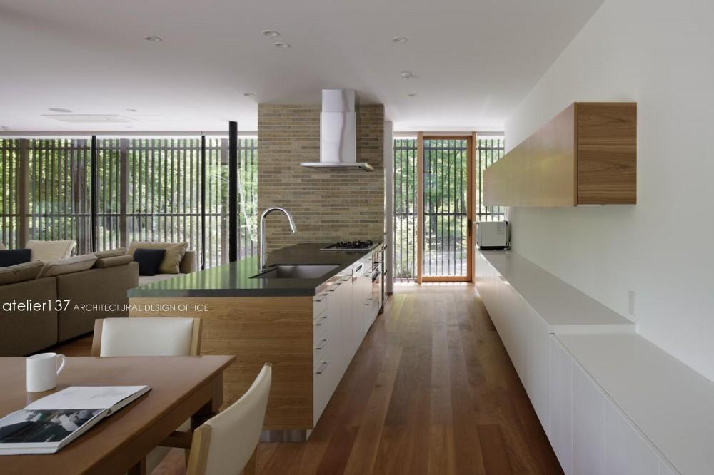 038那須Fさんの家 (キッチン)