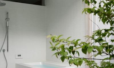 038那須Fさんの家 (浴室)