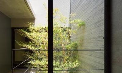 八王子の家 (外部と繋がるバスルーム)