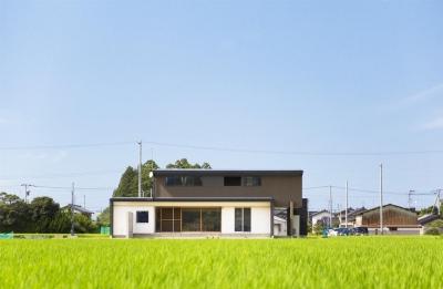 とても贅沢な敷地に建つ住宅 (軽海の家)