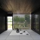 中庭と繋がる玄関