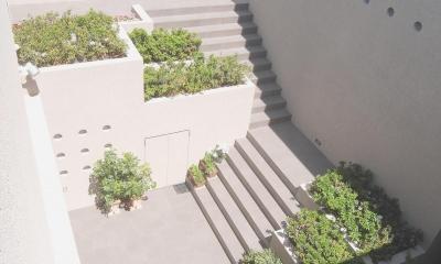 中庭|名古屋のコートハウス