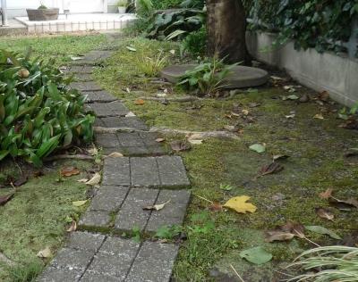 「潤い感のある緑」の成功例 (小径)