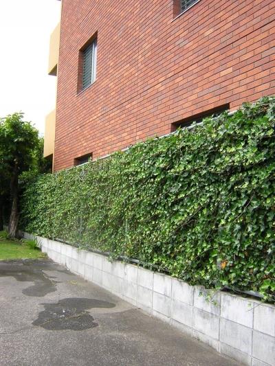 「潤い感のある緑」の成功例 (Green Wall)
