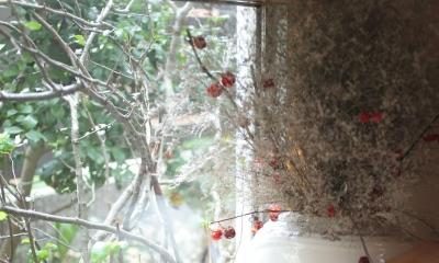Days-Cafe 小さな庭を眺めるCafe (地窓からの眺め)