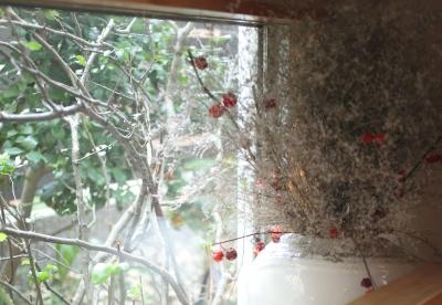 地窓からの眺め (Days-Cafe 小さな庭を眺めるCafe)