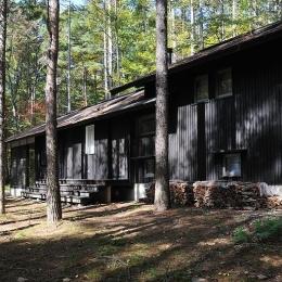 カラマツの森の中の家