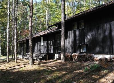 カラマツの森の中の家 (自然の中に無理なく溶け込むような外観)