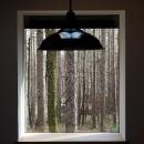 カラマツの森の中の家の写真 ピクチャーウインドウ