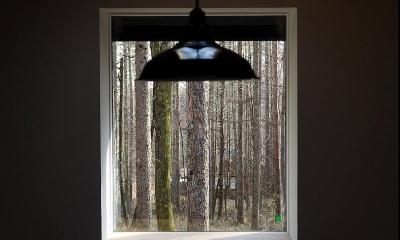 カラマツの森の中の家 (ピクチャーウインドウ)