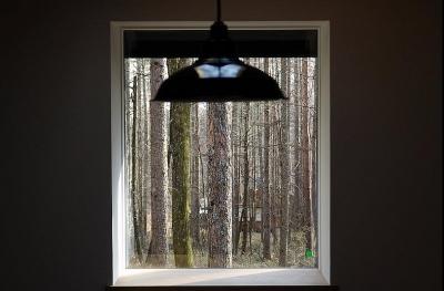 ピクチャーウインドウ (カラマツの森の中の家)