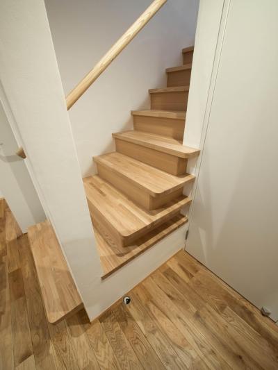 1階の階段 (三層回遊の家)