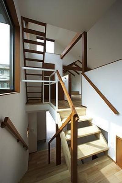 Hut room house/小屋部屋のある家 (採光と風通しのための階段)