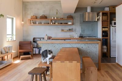 文京区Iさんの家 (オープンなキッチン)