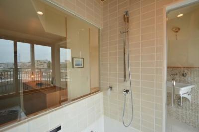 バスルームのシャワー水栓 (文京区Iさんの家)