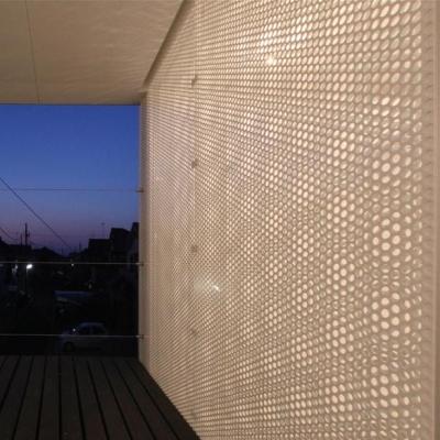 埼玉県鴻巣市 House T  - キリのキョリのイエ - (有孔板を透る光)