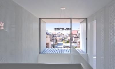 廊下からテラスを眺める|埼玉県鴻巣市 House T  - キリのキョリのイエ -