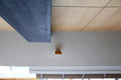 光と高さを最大限に活かして。趣味が散りばめられた大人空間 (天井&梁)