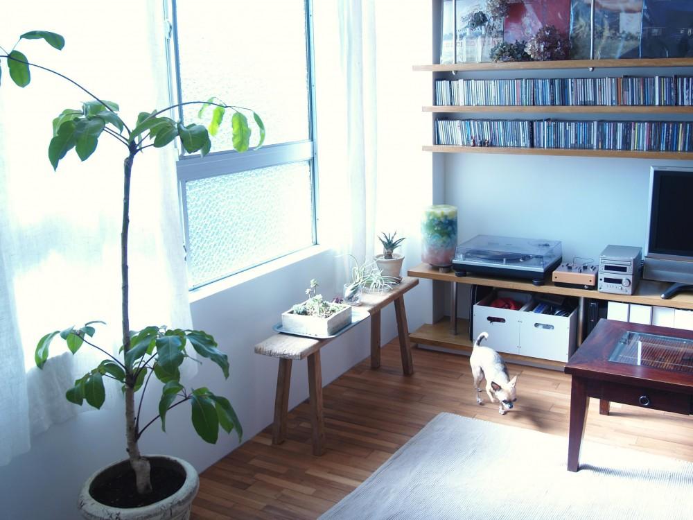 BBQスタイルのキッチンとインナーテラス (窓側には植物をずらりと並べて)
