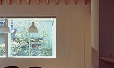 学園前の住宅 (窓から庭を望むダイニング)