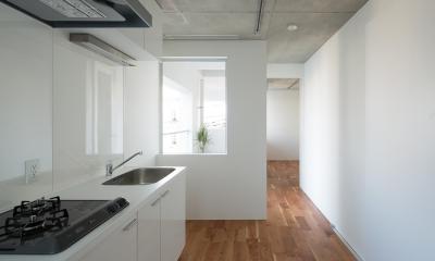 北千束の集合住宅 (キッチン1)