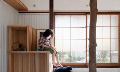 iesaka house (ペット部屋)