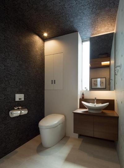 トイレ (Y9-house 「空中の造形」)