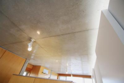 居室天井 (RCと木と間接照明と。シンプル1Kの洗練された空間)