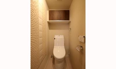 リノベーションで優美なライフスタイル (トイレ)