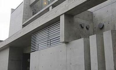 奈良の家   O 邸      2010 (北面外観)