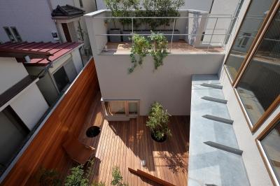 2階主寝室より中庭を見下ろす。 (三角の吹抜けのあるチークの家  ( 奥沢の家 ))