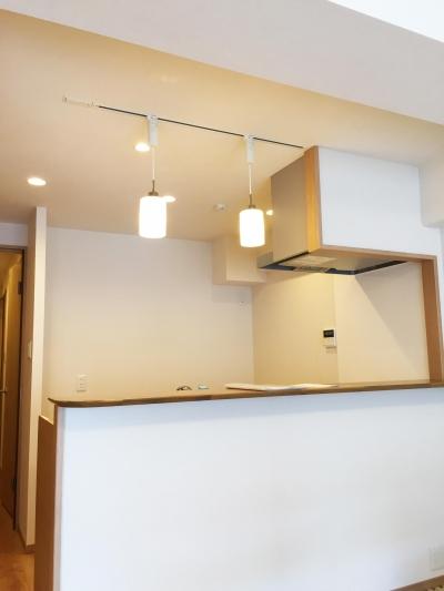 ライティングレールのキッチン (納戸とWIC+クローゼットで約7帖分の収納スペース)