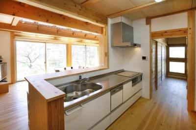 片流れ屋根の家 (キッチン)
