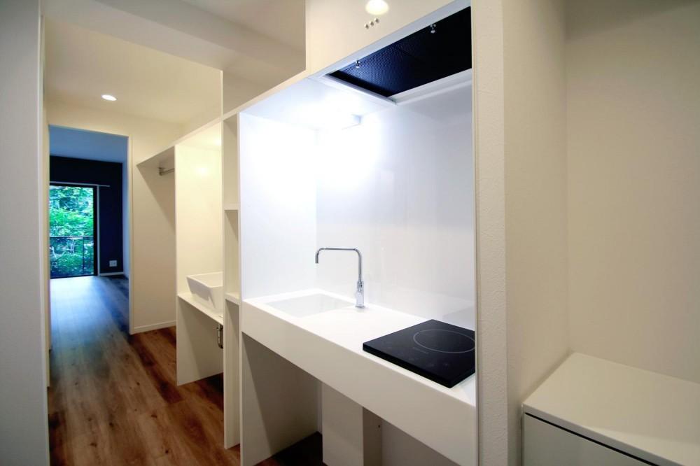 グレイッシュブルーの端正な空間 (玄関からメインルームへ)