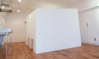 DIP-箱の中に箱がある47m²のワンルーム (全体)