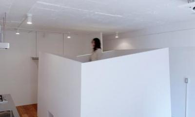 DIP-箱の中に箱がある47m²のワンルーム