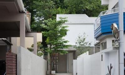 三鷹井の頭戸建てリノベーションPJ (長い玄関アプローチ)