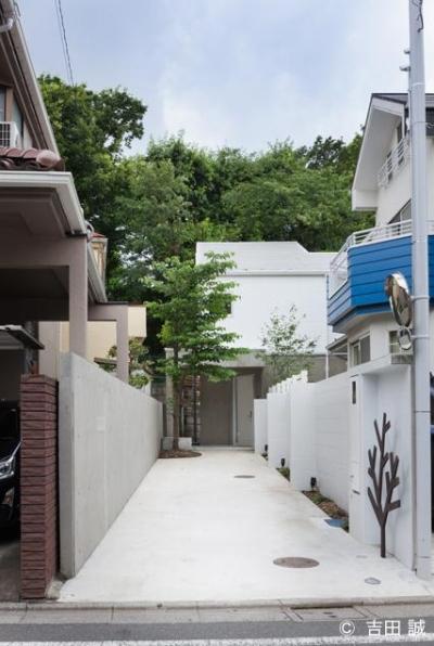 長い玄関アプローチ (三鷹井の頭戸建てリノベーションPJ)