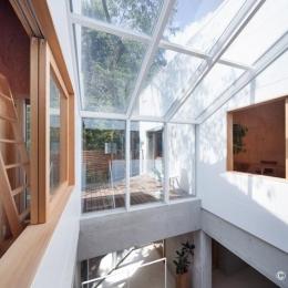 三鷹井の頭戸建てリノベーションPJ (吹き抜け空間とウッドデッキテラスを眺める)