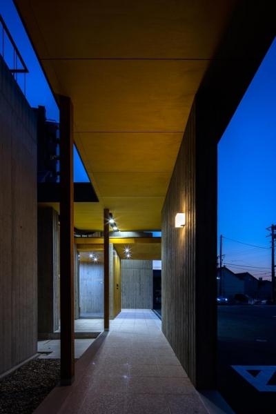 渡り廊下(夜景) (光が射し込む木のクリニック -PICTORUいずも画像診断室-)