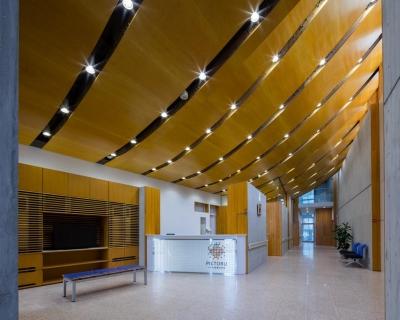エントランスホール・待合スペース (光が射し込む木のクリニック -PICTORUいずも画像診断室-)