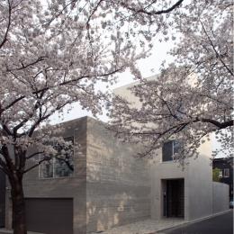 深沢S邸11
